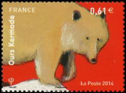 Les ours (Ours Kermode)
